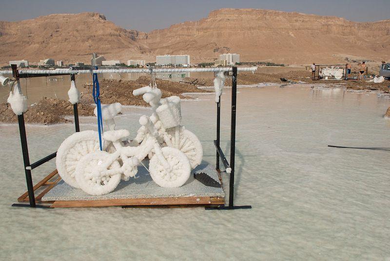 Dead see bikes
